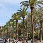 ピカソの出身地 マラガ – Malaga