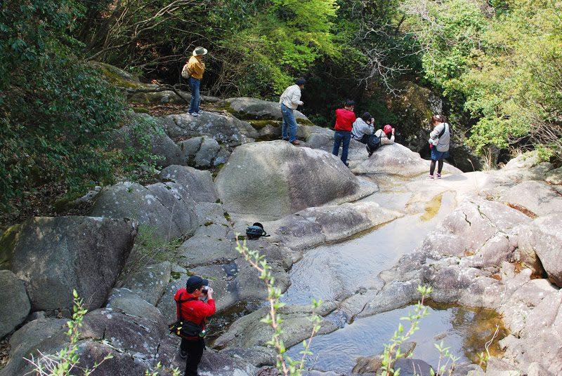 小豆島 春の滝と花巡り