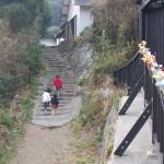 【海女さん募集!】 全国各地から家族連れや漁師になりたい若者が移住し人口回復した徳島県の漁村集落「伊座利(いざり)」でアワビやサザエをとる海女さんを募集しています。