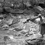 イサムノグチさんが作庭したパリ ユネスコ本部の庭園につかわれている阿波の青石は、徳島県神山町鮎喰川(あくいがわ)の石です。