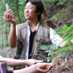 森の香り。梼原(ゆすはら)森林セラピーロード Forest Therapy Road, Kubo Valley, Yusuhara-town, Kochi pref.