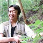 森の香り。梼原(ゆすはら)森林セラピーロード – Forest Therapy Road of Kubotani