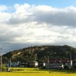 皇居東庭の敷石に採用された皇室御用達の「由良石(ゆらいし)」を見に由良山に登ってみました。 #香川
