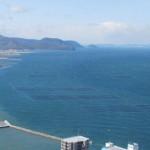 これなんでしょう?この季節、瀬戸内海には四角い枠がたくさんみられます。