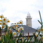 石造りの男木島灯台の内部が一般公開!見て来ました。 #男木島