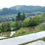 日本一おいしいお米を育む天空の棚田、高知県本山町の棚田 – Motoyama, terraced rice fields