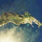 """愛媛の青島という猫の島がヤバイと話題に – cat island """"Aoshima"""""""