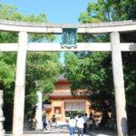 【国指定天然記念物】 大三島・大山祇(おおやまづみ)神社の楠が美しい – The beautiful camphor trees at Ōyamazumi Shrine