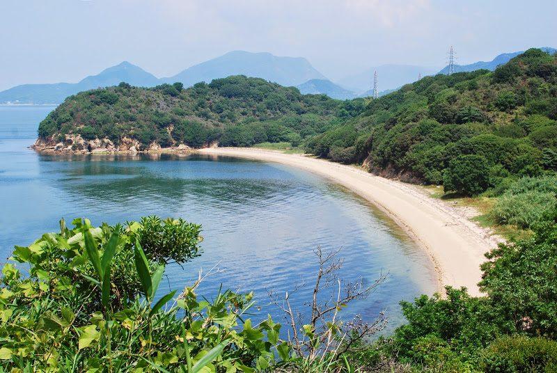 島民10人・牛500頭の牛の島『小豊島(おでしま)』 – Odeshima island, beef cattle ranch island
