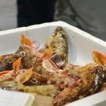 """【募集終了しました】瀬戸内の鮮魚移動販売「魚の川越」 Setouchi local fresh fish mobile catering """"Kawagoe"""""""
