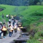 虫送り、江戸時代から小豆島に伝わる行事 The torch procession at Shodoshima island