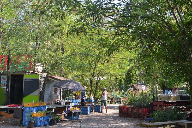 ベルリンのコミュニティ農園 王女の庭「Prinzessinnengärten(プリンセッシネンガルテン)」