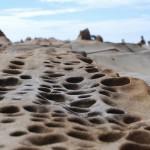 8000年の波の化石。高知県・竜串海岸 Tatsukushi Coast