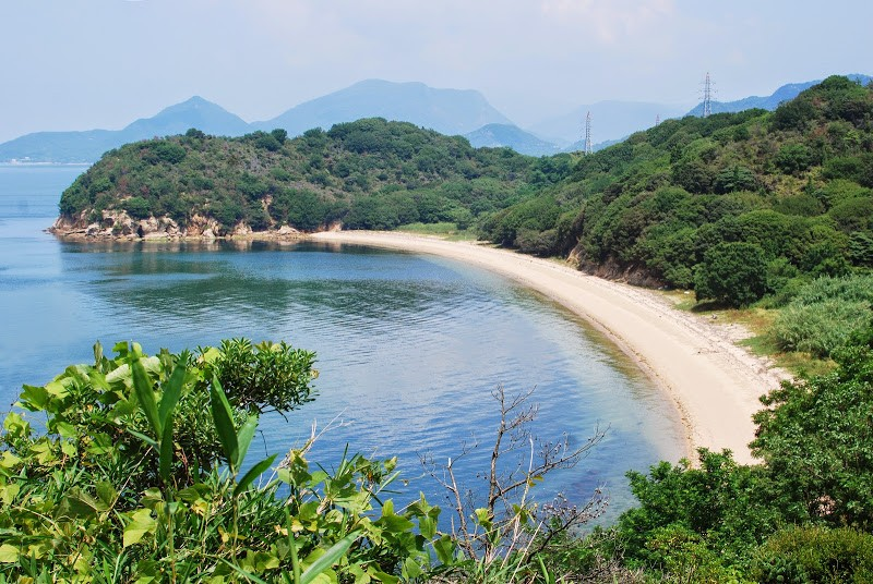 ヨットにのって牛の島 小豊島(おでしま)へ – Odeshima, beef cattle ranch island