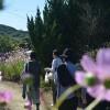 休島日の豊島を歩く。