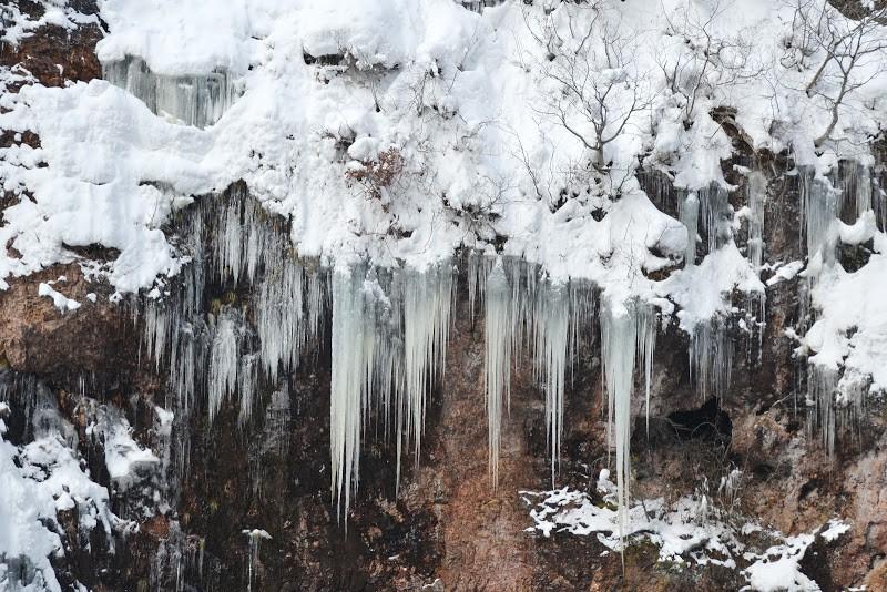 氷雪の世界に宿る色を探して。岩手県西和賀町