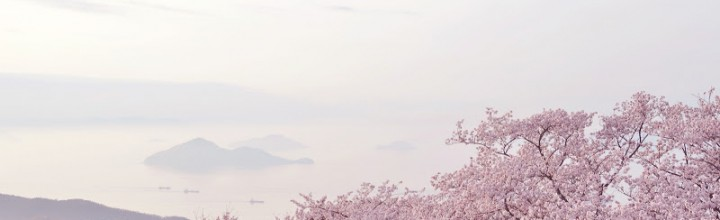 紫雲出山から見る瀬戸内海の島々と桜 The view to Islands of Seto Inland Dea from Mt. Shiude