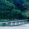 【4月15日(金)】田舎で見つけた希望の芽。佐那河内村「NHK ディスカバー四国」