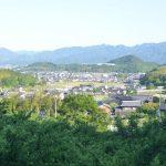 飯田農園のスモモと桃農園 –  Plum and peach orchard of Ida farm