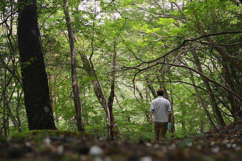 今日は朝から佐那河内村の森へ