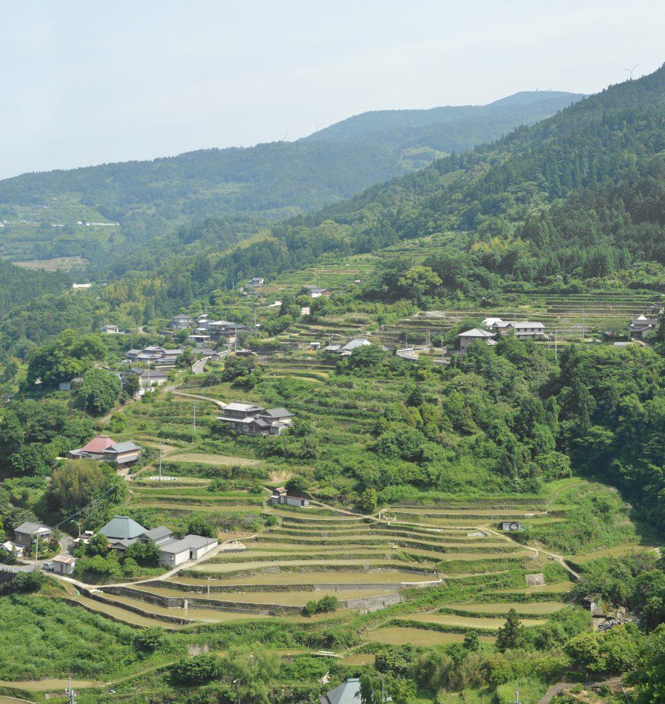 panorama_sanagochi03