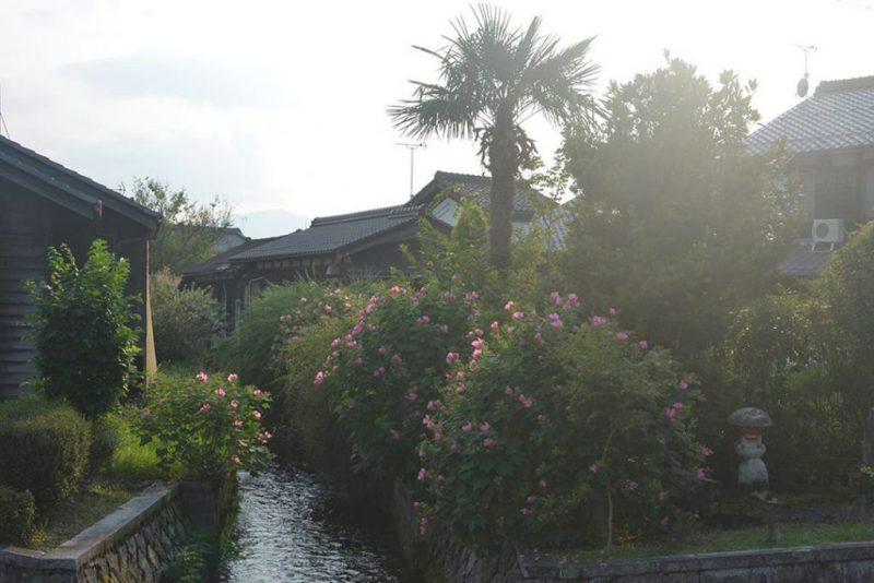 滋賀県高島市針江(はりえ)の川端(かばた)文化