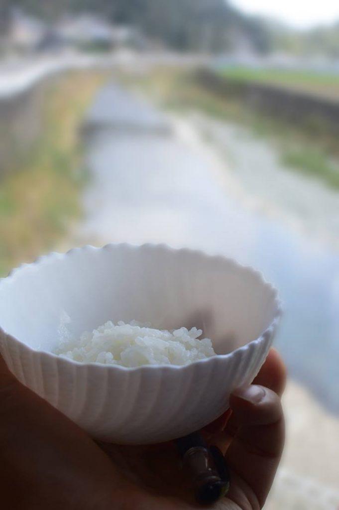 rice_sanagochi01
