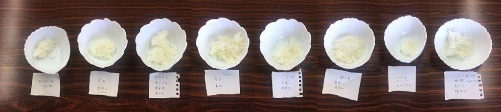 rice_sanagochi04