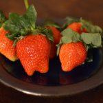 なにこれ、美味しい。徳島県佐那河内村(さなごうちそん)「さくらももいちご」