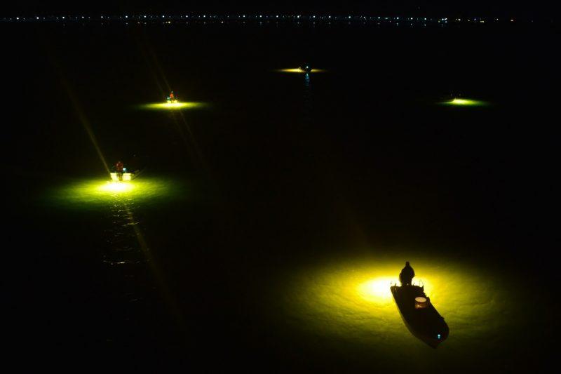 新月の吉野川。幻想的なシラスウナギ漁、煌々と