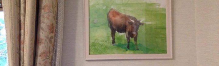 徳島県佐那河内村(さなごうちそん)、大川原高原牛のパッケージデザイン