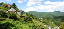 Forbesの選ぶ日本を面白くする「イノベーティブシティ」で徳島県神山町が2位!