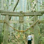 山口県熊毛郡田布施町『後井古墳(ごいこふん)』 – Goi Mounded Tomb