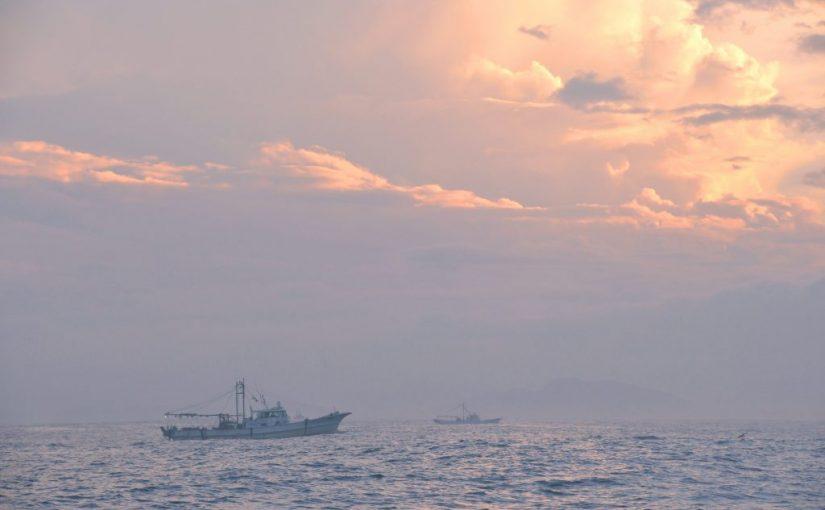 瀬戸内漁船取材。梅雨明け、夜の海底を泳ぐ鱧(はも)を追う – Got in a fishing boat of Conger pikes at Seto Inland Sea