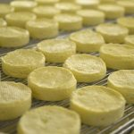 農家がつくるフェルミチーズの工房「醍醐」 愛媛県内子町 Daigo cheese factory