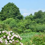 【8/19土 初心者歓迎】佐那河内村で学ぶ『家庭菜園のすすめ』