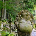 """苔むす森の喫茶店「苔筵(こけむしろ)」 Tea house covered with moss """"Kokemushiro"""""""
