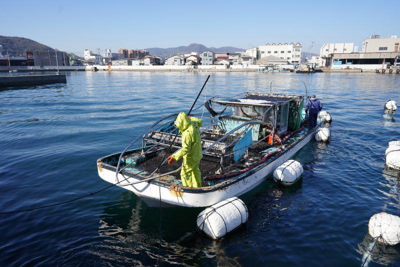 """瀬戸内が育んだ香川の海苔 – """"Nori(Seaweed laver)"""", a specialty of Kagawa pref."""