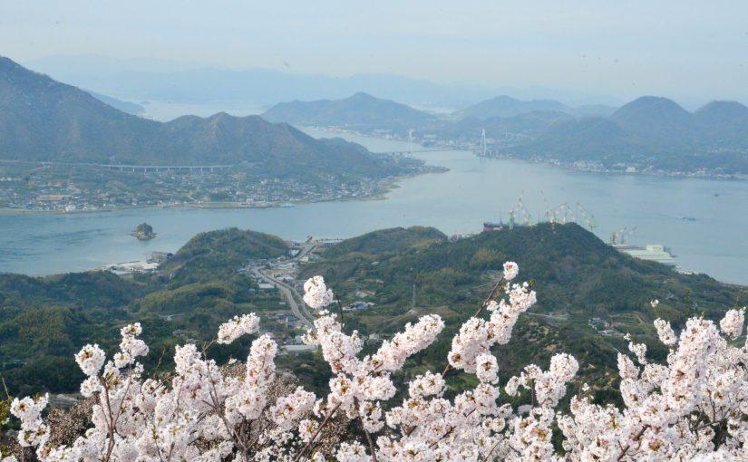 島の三千本桜。岩城島・積善山展望台 – 3,000 cherry trees at Iwagi island