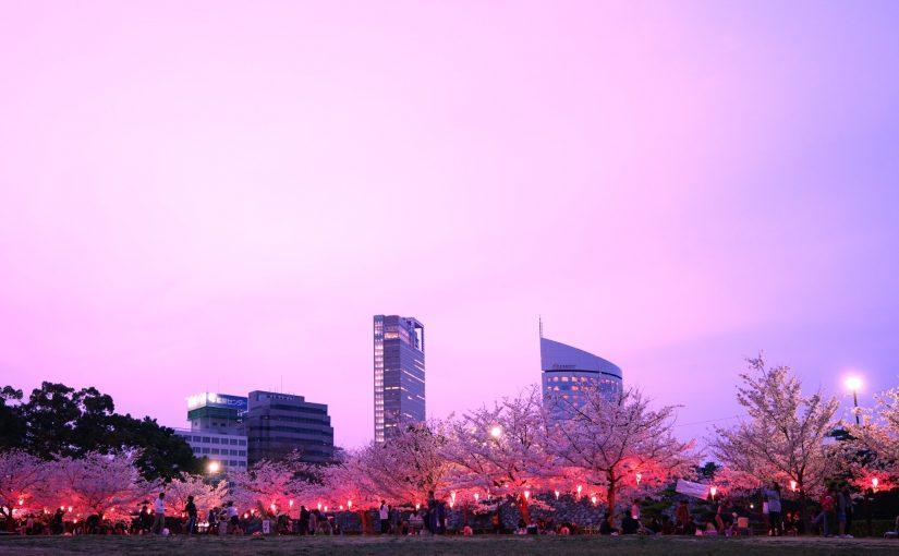 【4月8日(日)まで無料】高松城跡 玉藻公園で夜桜のライトアップ – Night cherry blossoms of Takamatsu Castle