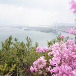 瀬戸内の多島美。鷲羽山(わしゅうざん)からの眺め – The Island Beauty of the Seto Inland Sea from Mt. Washuzan