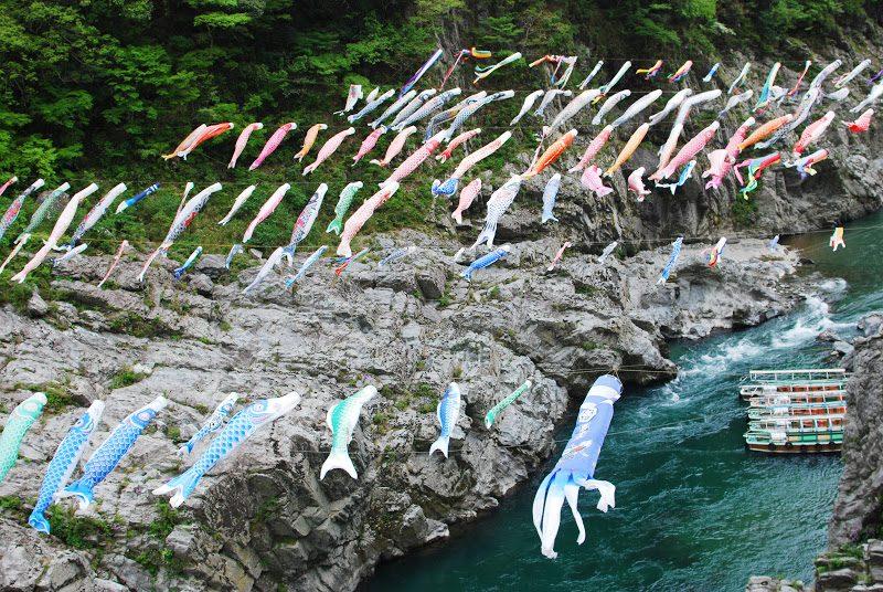 【3月下旬~5月末迄】鯉のぼり 秘境大歩危峡を泳ぐ The carp streamers of Iya valley