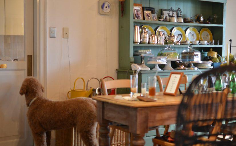 """島を望む小さな美術館と喫茶「ヴェランダ」 – Small musee and cafe """"Veranda"""""""