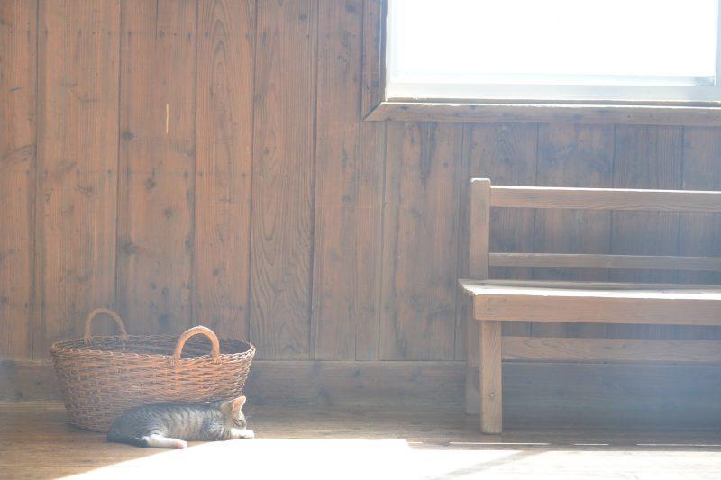 木造校舎から眺める絶景の瀬戸内「ネコノシマホステル」 – Neconoshima hostel & cafe in sanagijima island