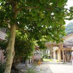 【世界初!遠赤外線焙煎コーヒーも】山あいの木造校舎、物・食・学の複合施設「シモノロ・パーマネント」 – Shimonoro Permanent