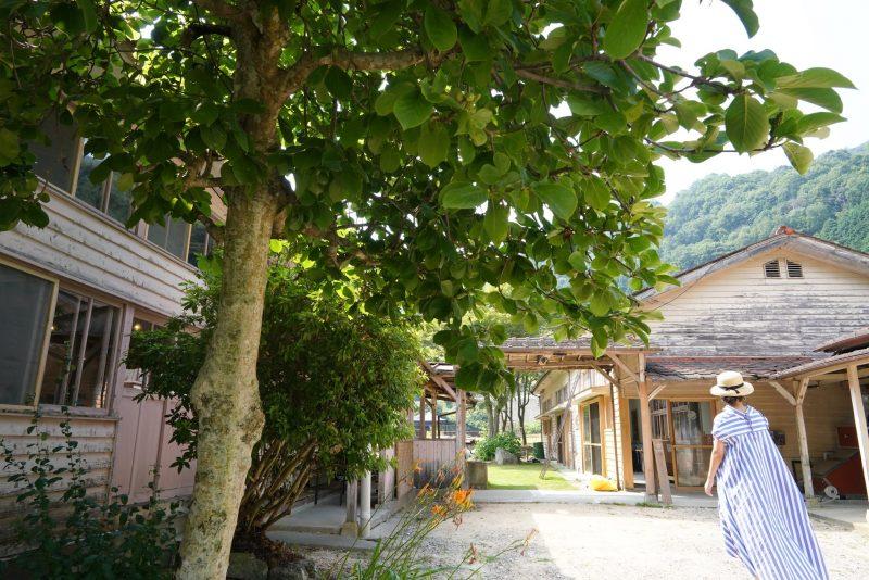 """山あいの木造校舎、物・食・学の複合施設『シモノロ・パーマネント』 – Complex facility """"Shimonoro Permanent"""""""