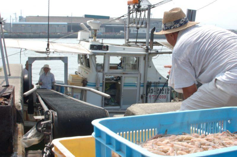 創業100年以上!老舗のかまぼこ屋「福弥蒲鉾」 – Fukuya Kamaboko (fish‐paste)