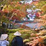 四国遍路の88番目、最後の寺。大窪寺の紅葉 – Beautiful autumn leaves of Ōkuboji temple