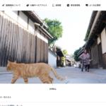 観光・移住サイト「まるがめせとうち島旅ノート」 – Island Travel Note of Setouchi, Marugame city