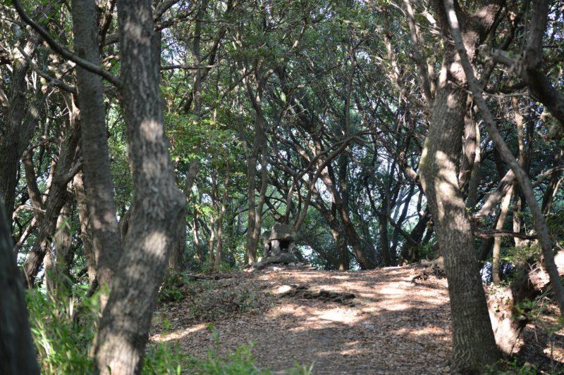 古代瀬戸内海の海上交通に関わる墓「長崎鼻古墳」 – Nagasakinohana Ancient Tomb